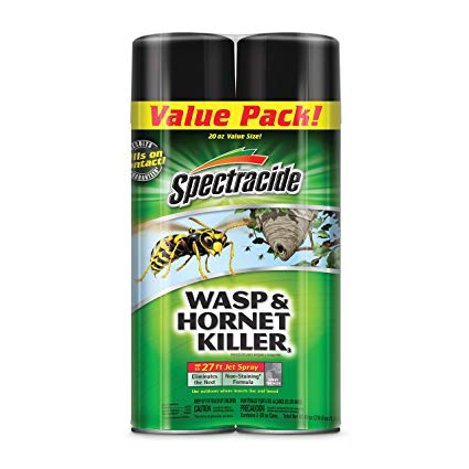 Wasp And Hornet Spray